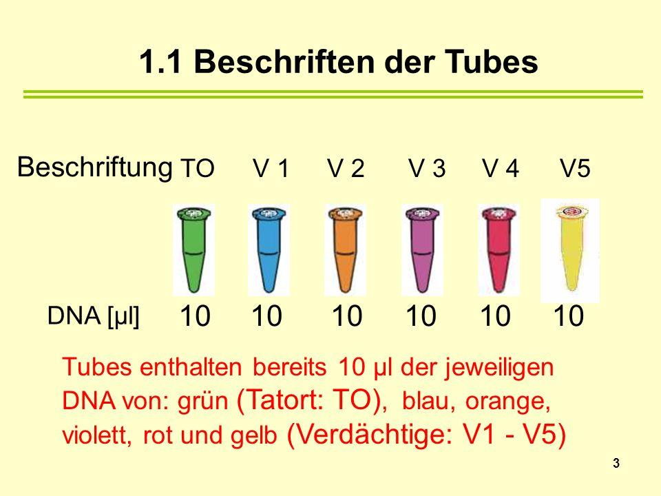 1.1 Beschriften der Tubes DNA [µl] 10 10 10 10 10 10 Beschriftung